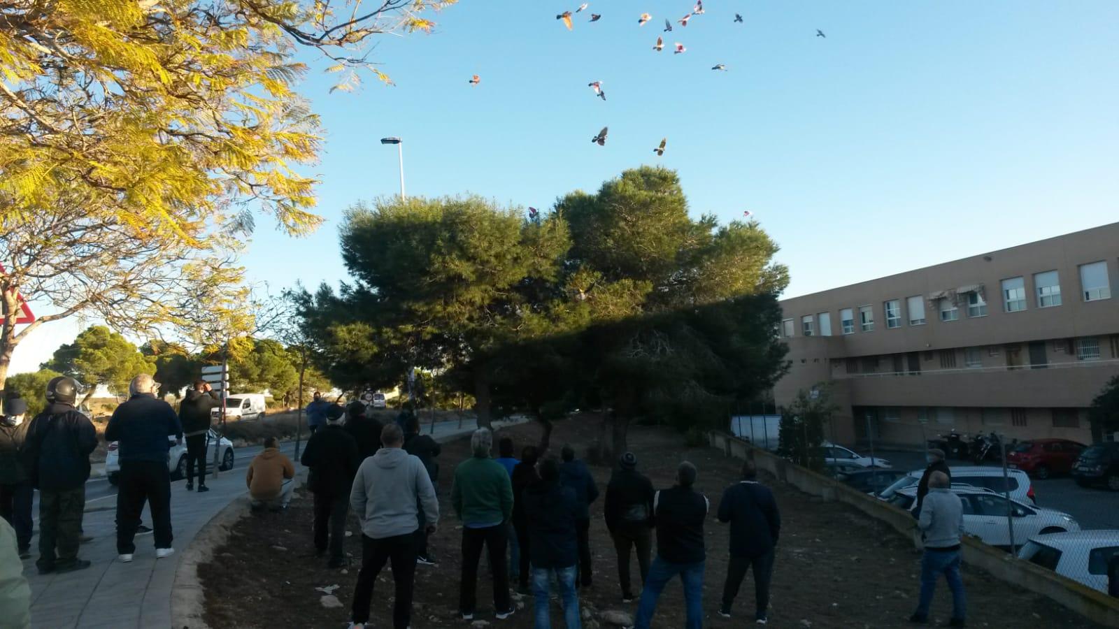 final_plazas_21 (10)